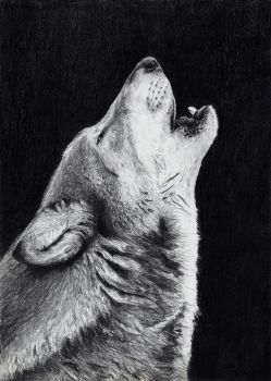 Howling by ISG-Art