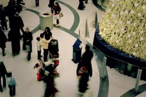 people at eaton centre by Lastday-of-magic