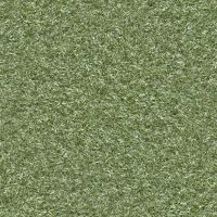 (GRASS 5) Plastic turf lawn green ground field sea by hhh316