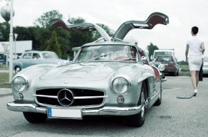 Gullwing by hellpics