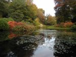 pond stock 01 by shadowsthyme