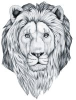Inked Lion II by HDevers