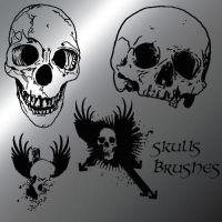 Skulls Brushews by myszka011