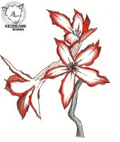 Impala lily by KILLER-LAMB