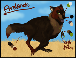 Avalanch ref sheet by CaledonCat
