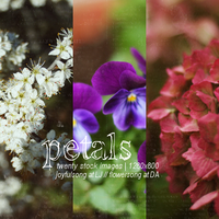 Stock Images 005 by flowersong