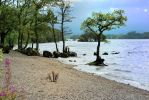 Loch Lomond by GadgieCAT13
