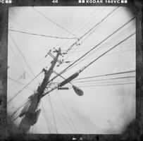 Sky Wires by CaterpillarOfAngst