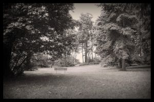 Bench by Athos56