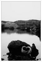Lonely Heart by dehrique