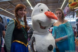 Frozen at FACTS 2014 by KillingRaptor