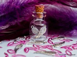 A bottle of wings by DianaVVolf