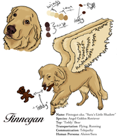 Finnegan Char Sheet. by aluinn