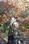 Lady With Japanese Maple In Autumn Watercolour by aegiandyad