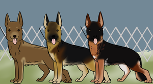 GSD Entry for Hazel's Show by Alcemistnv
