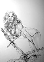 Red Sonja By David W. Miller by ConceptsByMiller