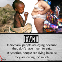 Starvation and Obesity by DigitallyDestined