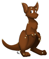 Motion Capture Kangaroo by mewgal