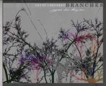 Branches by agnesvanharper