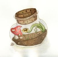 Mini Terrarium by Celou