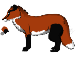 Badger Fox Reference by Myscal