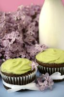 Vegan Avocado Cupcakes 3 by bittykate