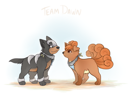 PMD Team Doodle by Kitsanil