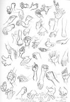 Hands Study by MrDudeFaceGuy