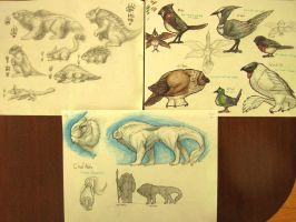 Tilik'to rodens and birds concepts by Mr-Goblin