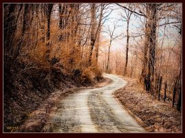 Autumn Road by vojis