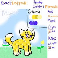 Daffodil Kittypet Reference Sheet by SparkleWolfey