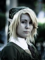 Link by Yukishir0 by DraconPhotography