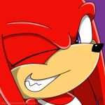 Free Ava - Knuckles by Metal-CosxArt
