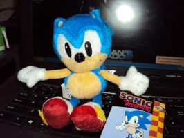 Sonic Plush No.10 by DazzyDrawingN2