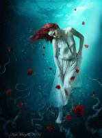 Sea of Roses by katmary