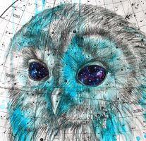 Heavenly Bodies 6# - Starry Eyed -Detail by LouiseMcNaught