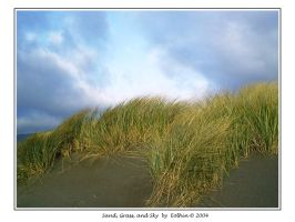 Sand, Grass, and Sky 171 by Eolhin