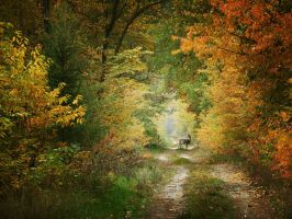In the Autumn. vol 02 by Inspektor02