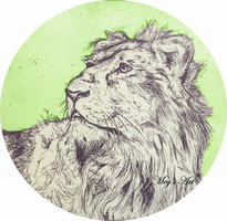 Lion (Etching) by stardust12345