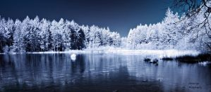 Infrared Reflections - Dalbeattie Loch by Okavanga