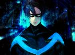 Nightwing by teralilac
