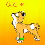 Ace OC by wolvesforever122