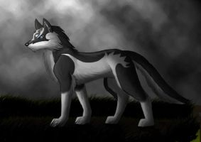 Link the wolf by Crazy-Matti