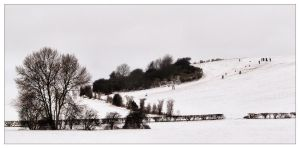 Snowy South End Hill by Bogbrush