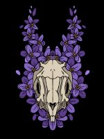 Rabbit Skull by MaboroshiTira