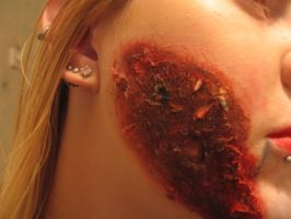Halloween Burn make up 2 by sazmullium