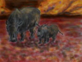 White rhinoceros mother and baby by silvershadoww