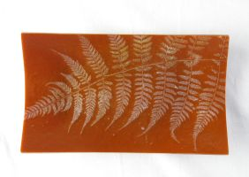 Fossil Fern Fused Glass Dish 1 by trilobiteglassworks