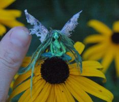 Miniature green pond fairy by chicorydell