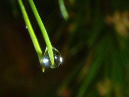 Water Drop by googly-googly2